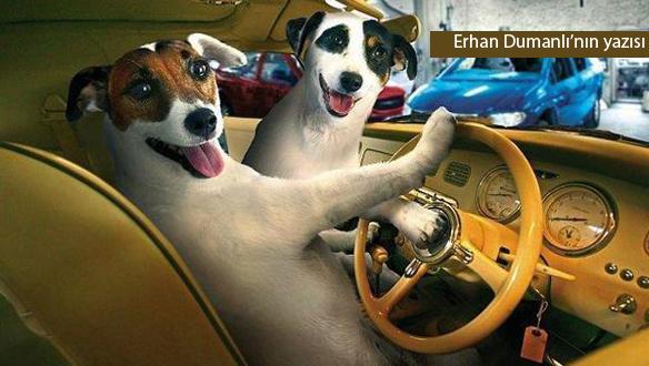 Trafik canavarları! (3)