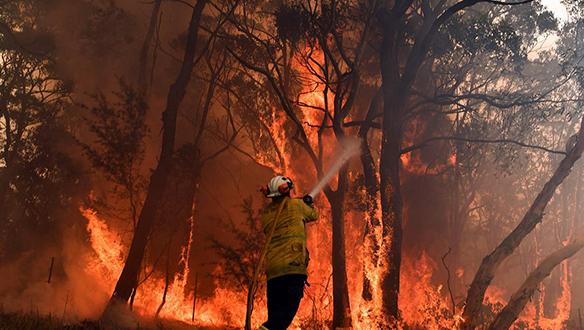 Avustralya orman yangını, mega yangınlar gerçeğini fark etmemizi sağlamalı