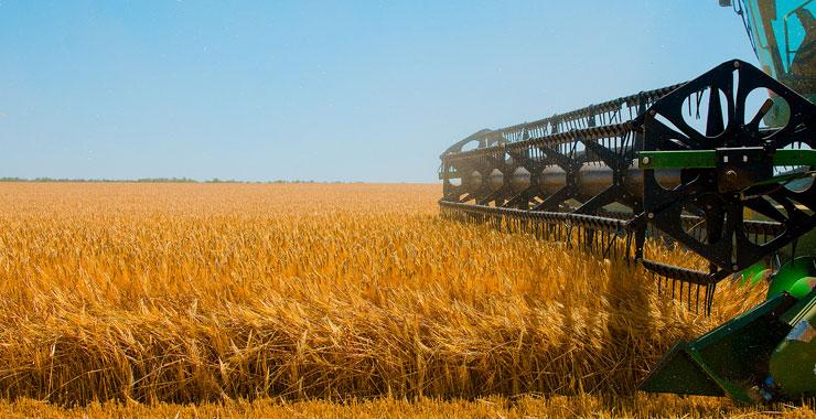 2019'da devlet destekli tarım sigortalarında toplam sigorta bedeli %30 arttı